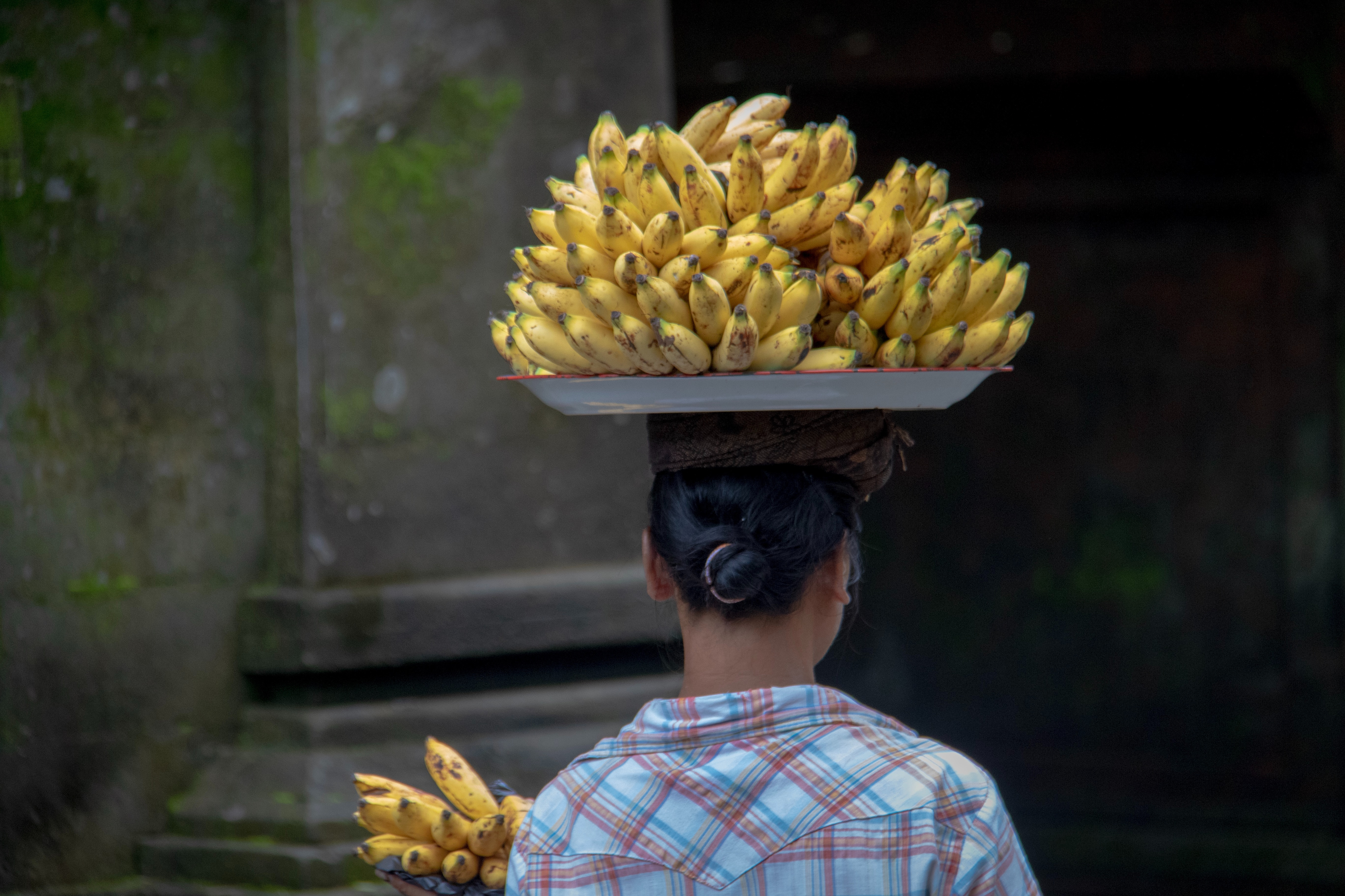 Premium Bananas Indonesia